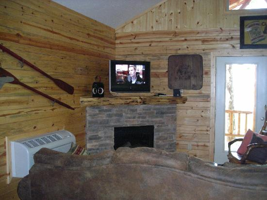 Beaver Lake View Resort: Electric fireplace