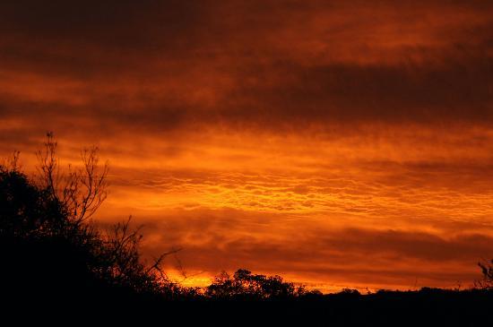 andBeyond Phinda Vlei Lodge : Sunset in Phinda