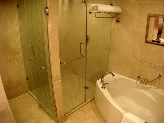 The soaking tub, shower stall (right) and toilet (left) - Picture of ...