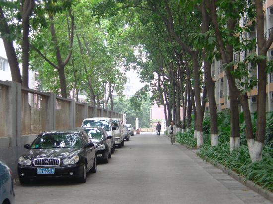 Saibao Apartment Hotel : Just outside apartment block