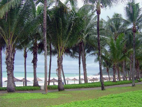 Club Med Bintan Island: View from the pool
