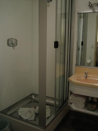 Karaka Tree Motel: bath 1