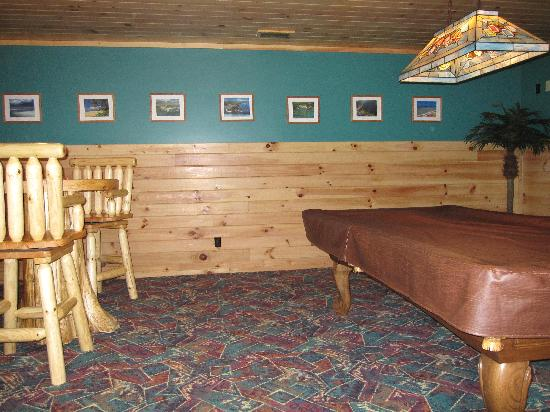 Buckeye Cabins: Hawaiian Palm's rec room