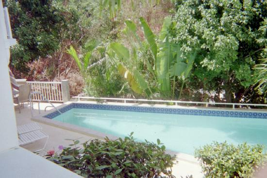 Palm Terrace Villas: pool