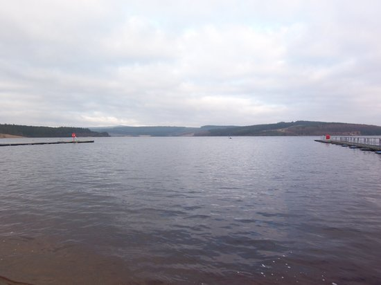 Kielder, UK: View from Leaplish Resort Restaurant