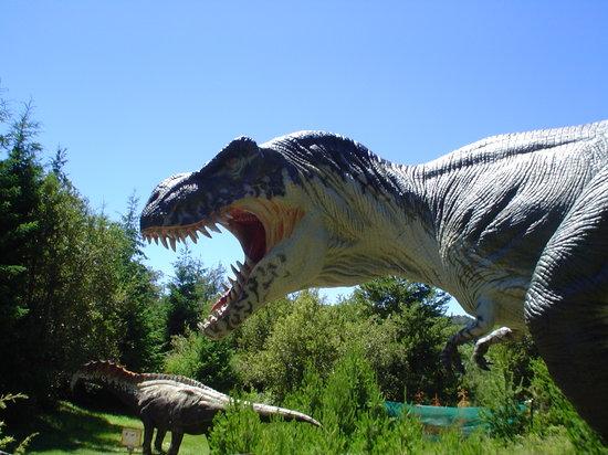 Parque Nahuelito: caminando entre dinosaurios