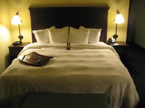 Hampton Inn Garden City: huge bed