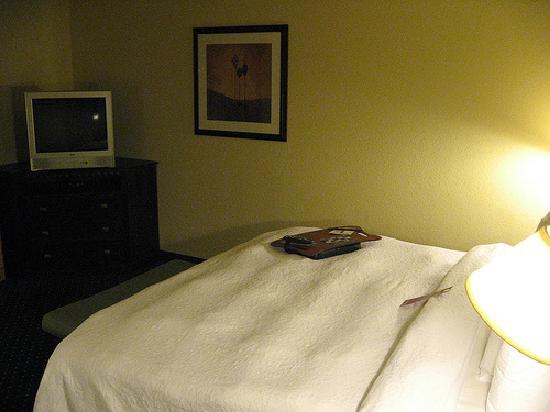 Hampton Inn Garden City: bed and tv, small tv