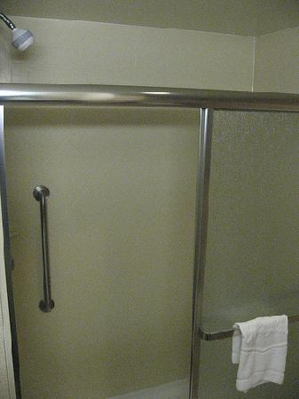 Hampton Inn Garden City: shower on the left as you enter
