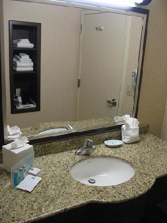 Hampton Inn Garden City: sink it...