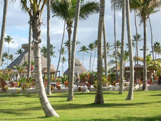 Now Larimar Punta Cana: Terrain