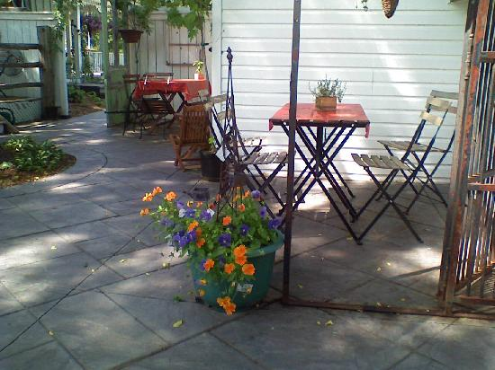 Rumble Tum Cafe & Gifts : Beautiful Pansies in the garden