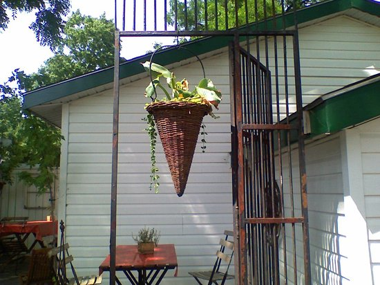 Rumble Tum Cafe & Gifts : Hanging basket in the garden