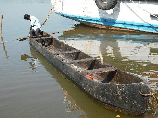 Dr. Salim Ali Bird Sanctuary: A canoe made from the trunk of a Mangrove tree