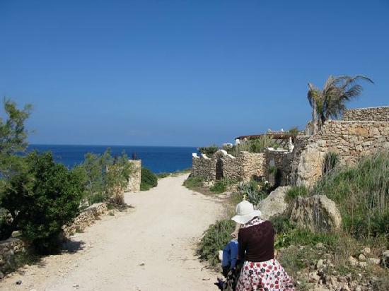 Residence Villalba : 3 min walk away lampedusa looks like this