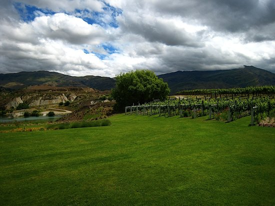 Appellation Wine Tours: Carrick