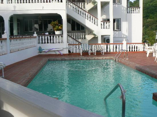 Carriacou Grand View: Hotel pool