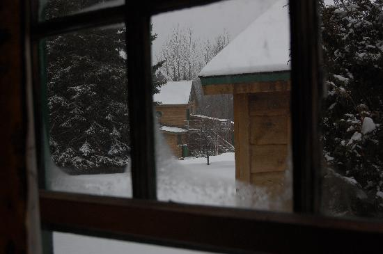 Van Hoevenberg Lodge & Cabins : The view from one of the windows