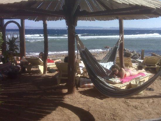 Seaview Hotel Dahab: Hammocks by the beach