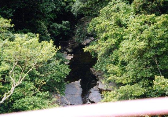 Kunigami-son, Japan: 中間地点のつり橋から