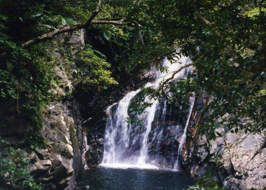 Kunigami-son, Japan: 近くまで行けてマイナスイオン120%の滝