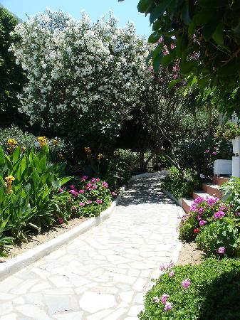 Adele Beach Hotel Bungalows : Garden