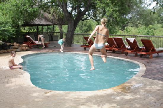 ‪‪Sabi Sabi Bush Lodge‬: Pool‬