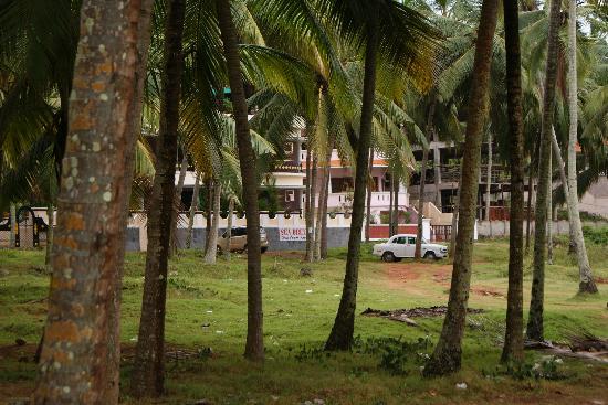 Sea Breeze Beach Resort: hotel from the beach