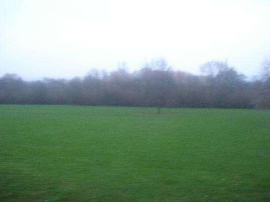 De Vere Theobalds Estate: grounds