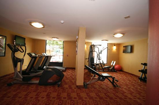 Holiday Inn Express Winston-Salem Downtown West: Exercise Room