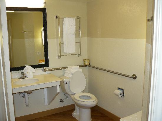 La Quinta Inn & Suites Dallas Plano West: Bad