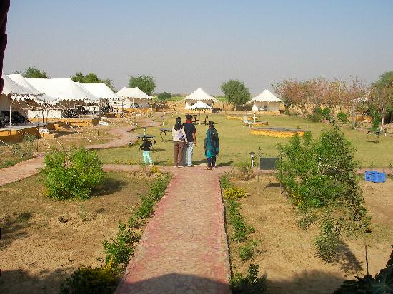 Mirvana Nature Resort and Camp: view of tents