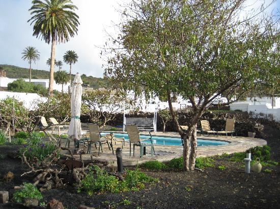 Villa Lola y Juan : El jardín con la piscina