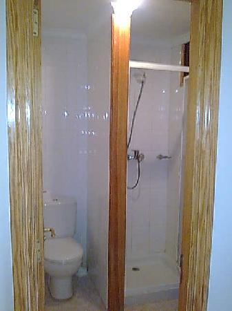 Apartamentos Strelitzias : Shower room