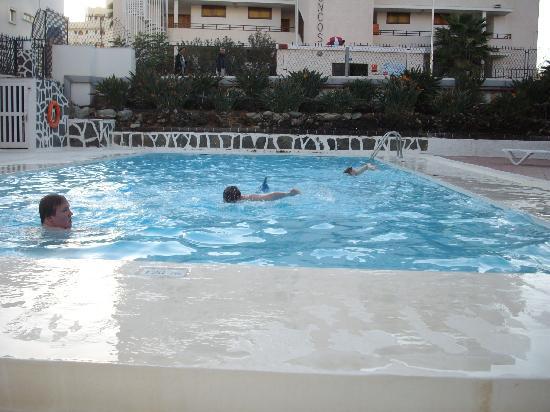 Apartamentos Strelitzias: Pool