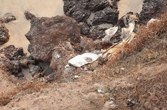 Kannur Beach House: Trash on the beach thrown by nature-friendly employees