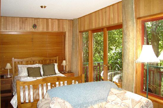Springbrook Lyrebird Retreat: Sleeping area