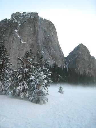 La Quinta Inn & Suites Fresno Riverpark: Yosemite in Winter - 2 hrs away