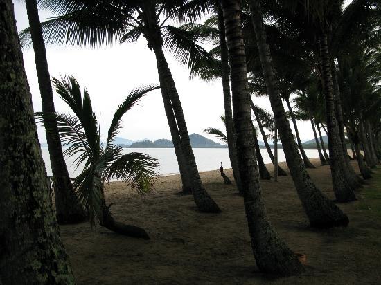 Elysium Apartments: Beach near Elysium