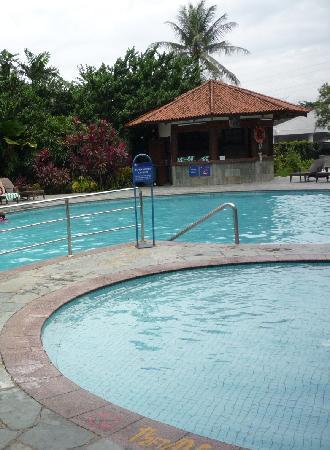Holiday Villa Hotel & Suites Subang: Pool