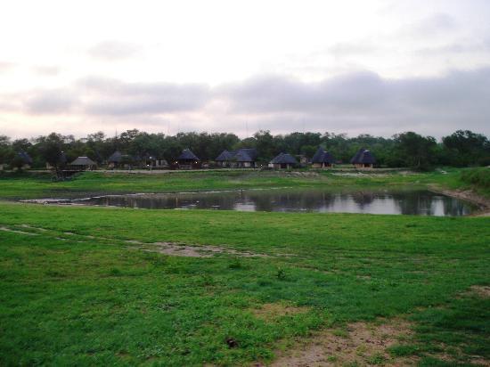 阿拉修薩野生動物園酒店照片