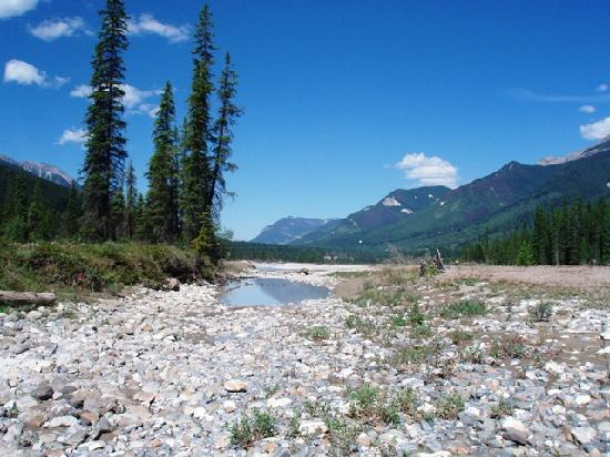 Kicking Horse River Chalets: Short walk from the chalets to the Kicking Horse River