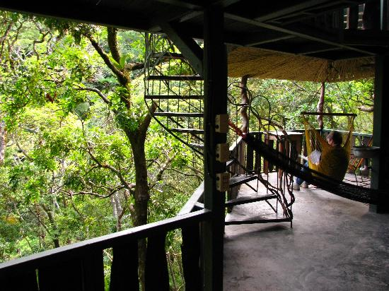 TreeTop House: a lower level porch, where we fed birds