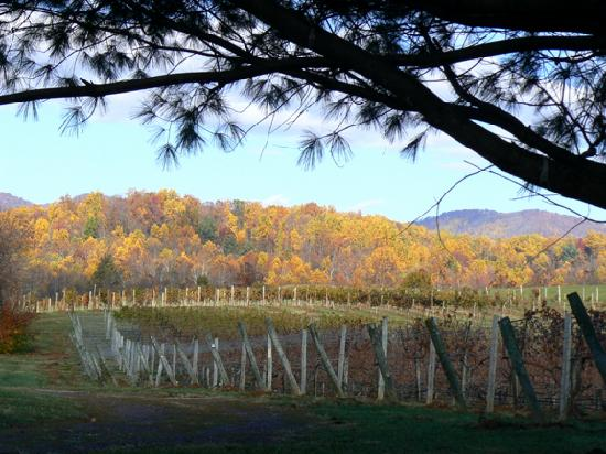 Sharp Rock Vineyard Bed and Breakfast Cottages: The Vineyward