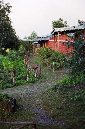 Himalayan Village Sonapani: the cottage