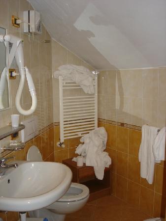 Alpen Village Hotel : Bagno della nostra camera
