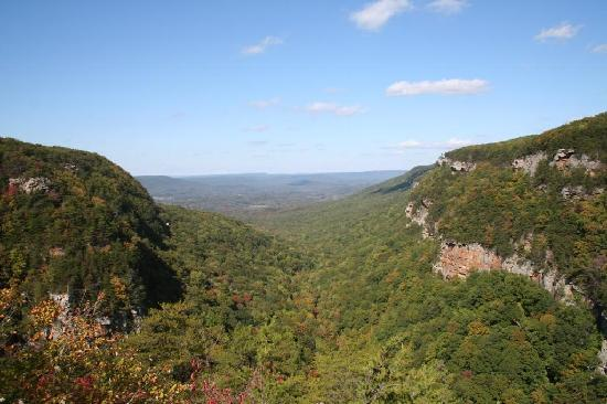 Rising Fawn, จอร์เจีย: Cloudland Canyon State Park- overlook