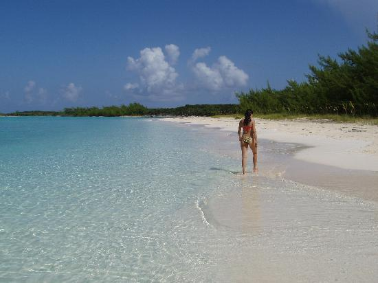 Club Peace & Plenty Exuma Island : This is Peace & Plenty's beach when it is crowded