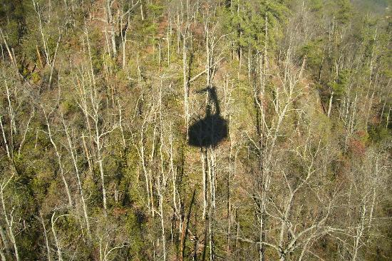 Ober Gatlinburg Amusement Park & Ski Area: Shadow of the Tram as its going up