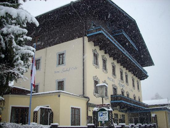 Hotel Seehof: Snowing on arrival